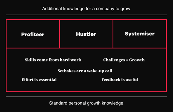 The systemiser, the profiteer, and the hustler are parts of the Growth Mindset 2.0