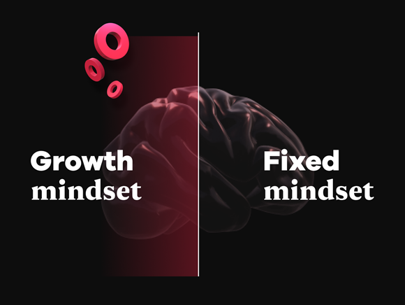 RockBoost's growth and fixed mindsets