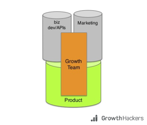 Graphic showing the structure of a growth team